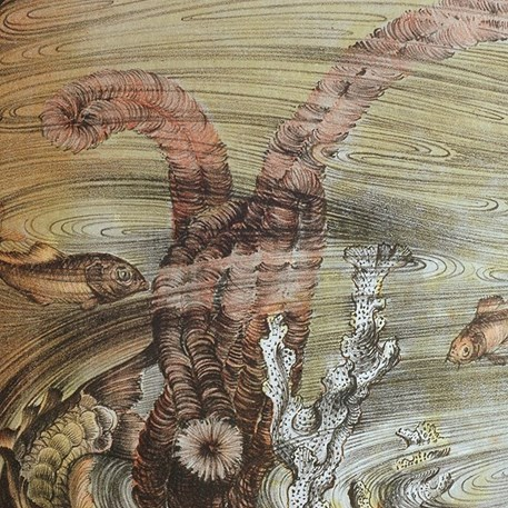 Detail van Kleurenlitho Jan Schonk - Spiegelkarpers en Watertorren